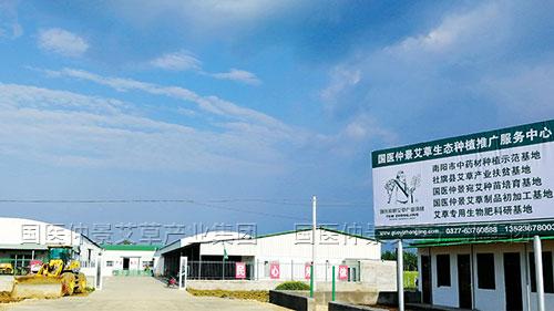 国医仲景艾草产业园